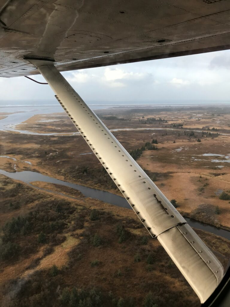 Aerial view of Seal Creek in the Yakutat Forelands, October 2019