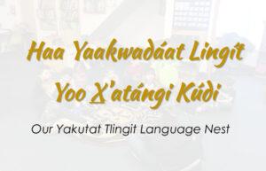 Read more about the article Haa Yaakwadáat Lingít Yoo X'atángi Kúdi: Yakutat Tlingit Language Nest Application for Academic Year 2019-20