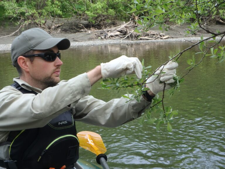 USFS River Ranger and YTT Fisheries Biologist clean our rivers of lost fishing gear and other litter throughout the season.